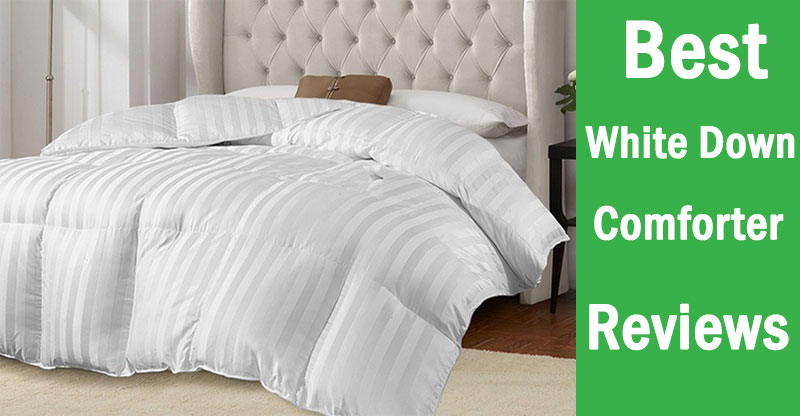 Best White Down Comforter