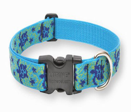 Turtle Reef Adjustable Dog Collar