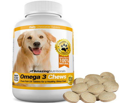 Amazing Nutritionals Probiotic Joint for Dogs